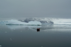 Antártica-II-289